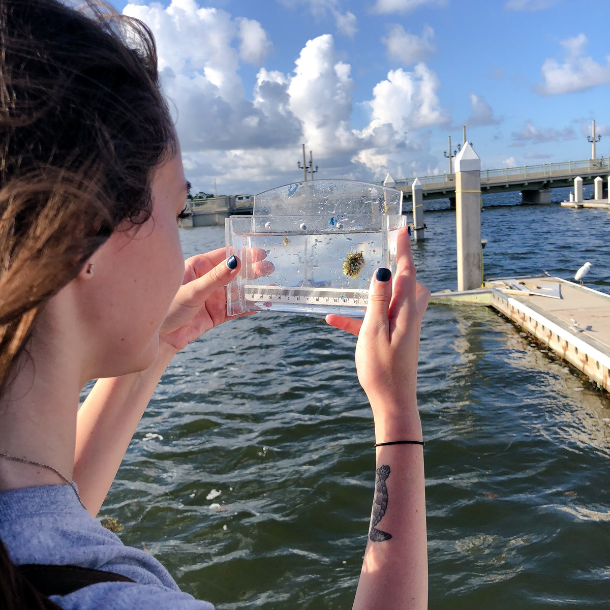 Connected Clothing Company founder Lexy holding viewing chamber with juvenile striped burrfish on a pier