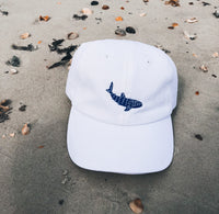 Connected Clothing Company Whale Shark Embroidered Cotton Cap on a beach - 10% of profits donated to Mission Blue ocean conservation efforts - ethically and sustainably made clothing