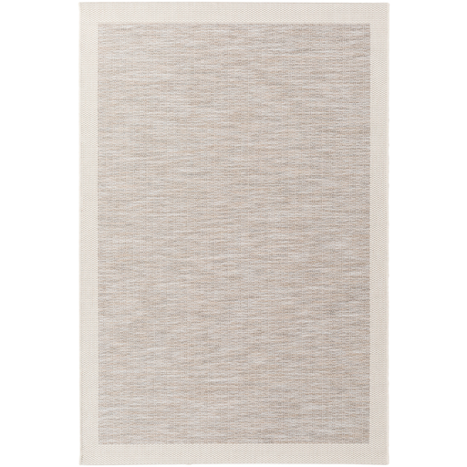 Beige Border Indoor/Outdoor Rug
