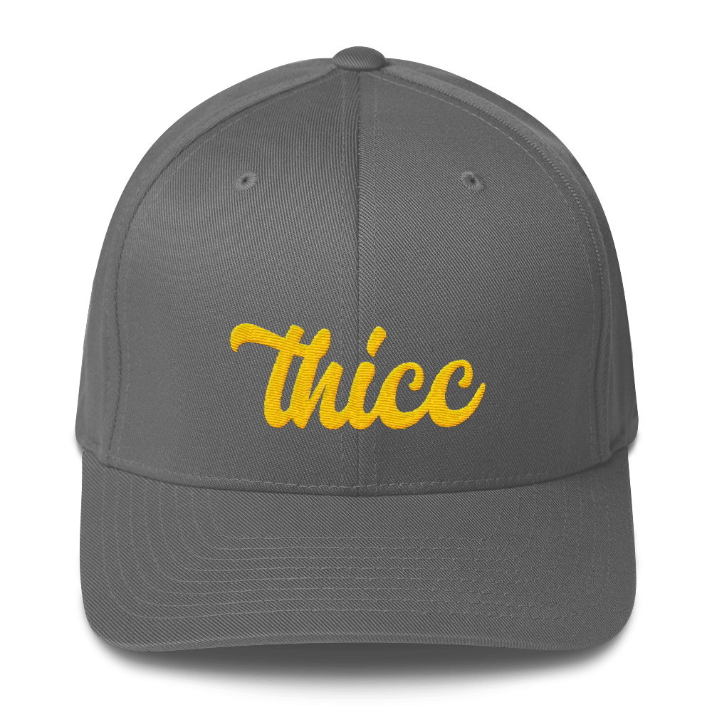 Thicc | Fitted Baseball Hat