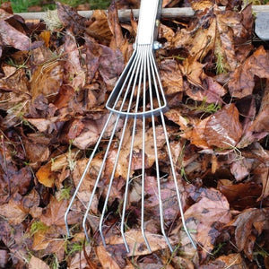 Leaves & Rakes