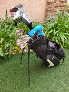 Complete Golf Set TaylorMade Driver,Wood & Irons,Ping Putter, Puma Bag, RH, Good
