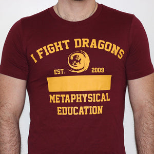 I Fight Dragons Gym T-Shirt
