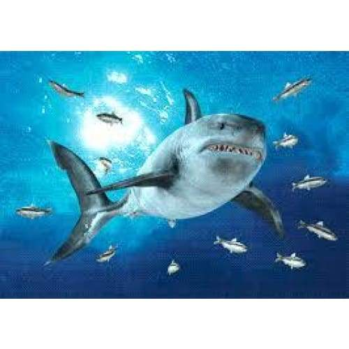3D Postcard Shark Standard General Merchandise $4.95