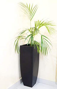 32 inches Metal Tall Planter Pot | Home Decor Long Indoor Outdoor Plant Pot, Black, Set of 1 : Garden & Outdoors