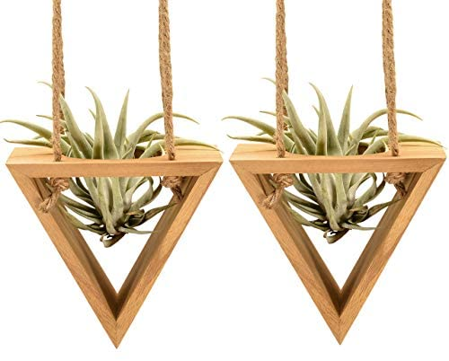 2 Pack Hanging Air Plant Succulent Holders for Window Wall, Geometric Wooden Triangle Planters for Succulents