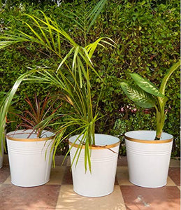 Set of 3 - 10 inches Round Metal White Planter | Indoor Outdoor Balcony Patio Plant Pot | Home Garden Office Flowering Container Cover | Living Room Decor, Garden & Outdoors