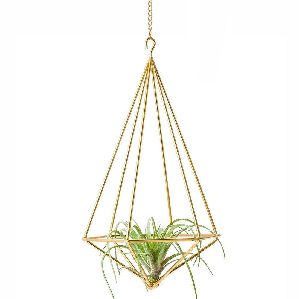 2 Triangular Air Plant Holder - Stainless Steel Plant Hanger - wallandroom.com