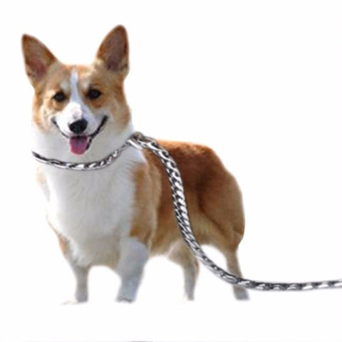 Stainless Steal Dog Leashes Pet Dog Collar
