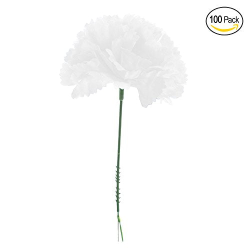 "Royal Imports 100 White Silk Carnations, Artificial Fake Flower for Bouquets, Weddings, Cemetery, Crafts & Wreaths, 5"" Stem Pick (Bulk) by"
