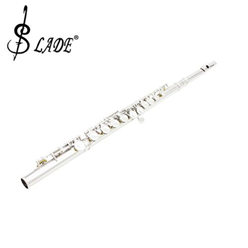 Fenteer Polished Cupronickel 16 Closed Hole C Key Flute with Carry Case Screwdriver Musical Instrument Silver