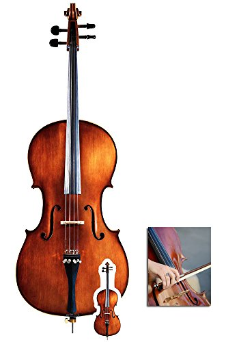 Fan Pack - Cello Musical Instrument Cardboard Cutout / Standee / Standup - Includes 8x10 Star Photo