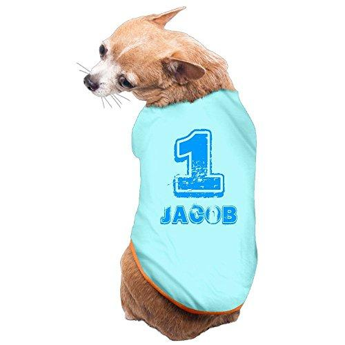 Babys 1st Birthday T Shirt For On Dog Clothes Pet Puppy Tee Shirts Dogs