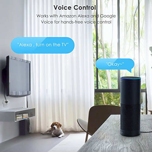 Teckin Smart Plug Mini Socket Works with Amazon Alexa Echo and Google  Assistant, Wireless Outlet with Energy Monitoring and Schedule Timer  Function,