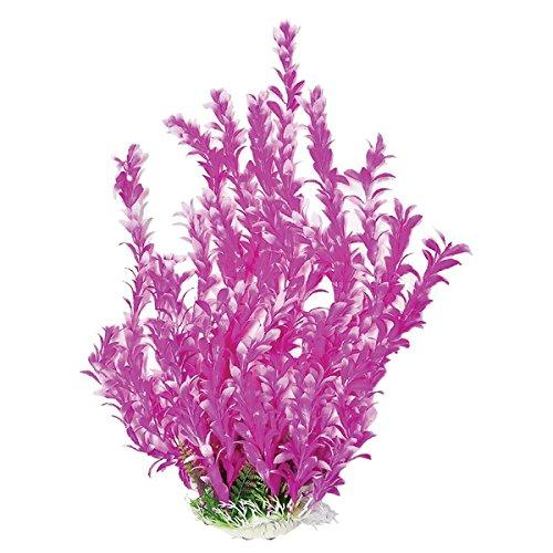 AQUATOP AQUATIC SUPPLIES 003502 Bacopa-Like Aquarium Plant Pink/White, 16""