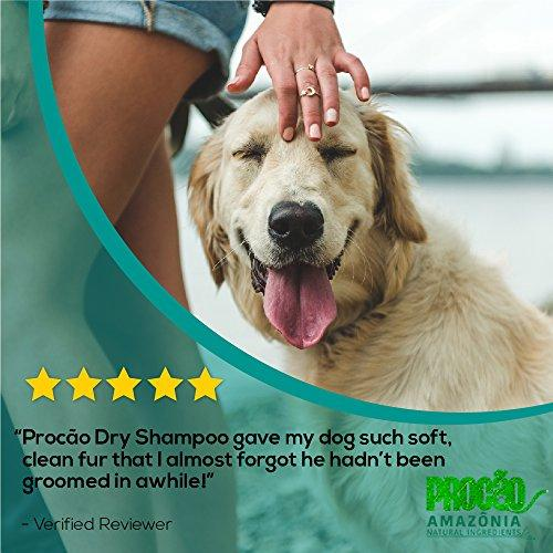 Dry Pet Shampoo - Procão Dry Shampoo (6 7 oz ) - No Rinse Formula -  Deodorizing and Dirt Fighting Dry Bath - All-Natural Ingredients from the  Amazon