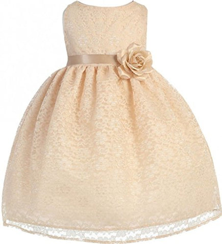 BNY Corner Baby Flower Girl Dress Champagne Floral Lace For Baby & Infant Champagne 18M CA749B