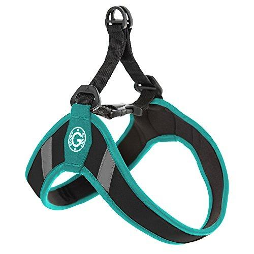 Gooby Simple Step In Dog Harness with Reflective Lining, Turquoise, Medium