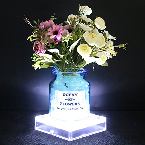 Acmee 5 Inch Acrylic Square Led Vase Base Ligthtplate Light With 16