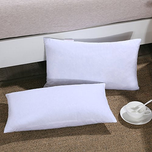 Down Feather Throw Pillow Insert 40X40 Couch Pillow Insert Set Of 40 New Feather Throw Pillow Inserts