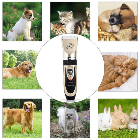 Ceenwes Dog Clippers Low Noise Pet Clippers Rechargeable Cordless Dog Trimmer Pet Grooming Tool Professional Dog Hair Trimmer with Comb Guides scissors Nail Kits for Dogs Cats and Other Animals,,KeeboVet Veterinary Ultrasound Equipment,KeeboVet Veterinary Ultrasound Equipment.