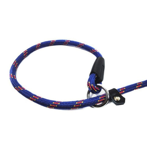 Strong Nylon Dog Puppy Leash Dog Collars And Leads