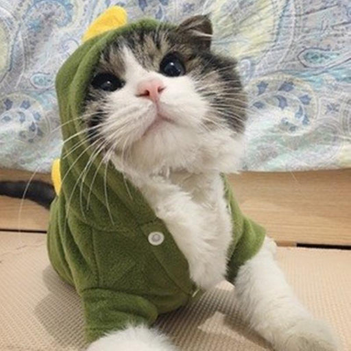 Warm Cat Clothes Soft Pet Clothes for Cats Funny Pet Costumes Cat Supplies Red Green XS to XL 10d20