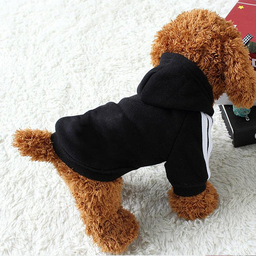Winter Warm Pet Dog Clothes Hoodie Puppy Coat Cat Jacket for Small Large Dog Clothing Vest Spring Autumn Pet Apparel Outfit