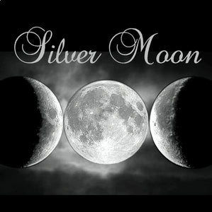 Silver Moon - Metaphysical: Reaching Your Spiritual Awakening
