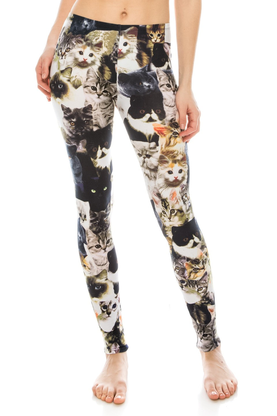 Real Cats Leggings USA