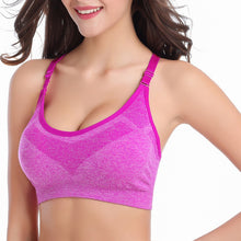Active Sport Multi-Color Lightwight Bra