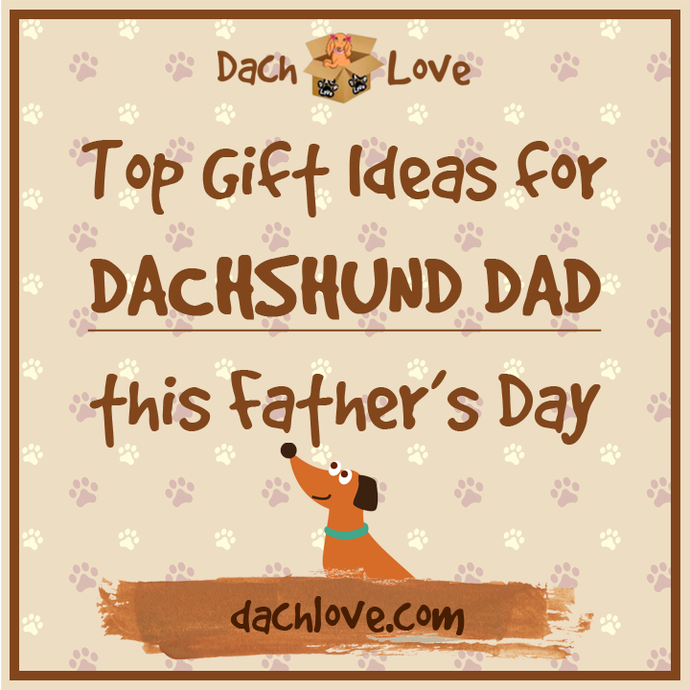 7 Top Gift Ideas for Dachshund Dad this Father's Day - 2018