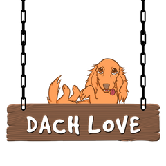 DachLove Dachshund Related Blogs