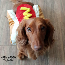 Load image into Gallery viewer, Dachlove.com Hot Dog Costume, costume- Dachshundloversonline  brings together dachshund merchandise, original and unique designed sausage dog gifts, accessories from all around the world.  The perfect addition to your dachshund loving home.  Find it in one store where you can buy them online and free shipping worldwide to your doorstep.