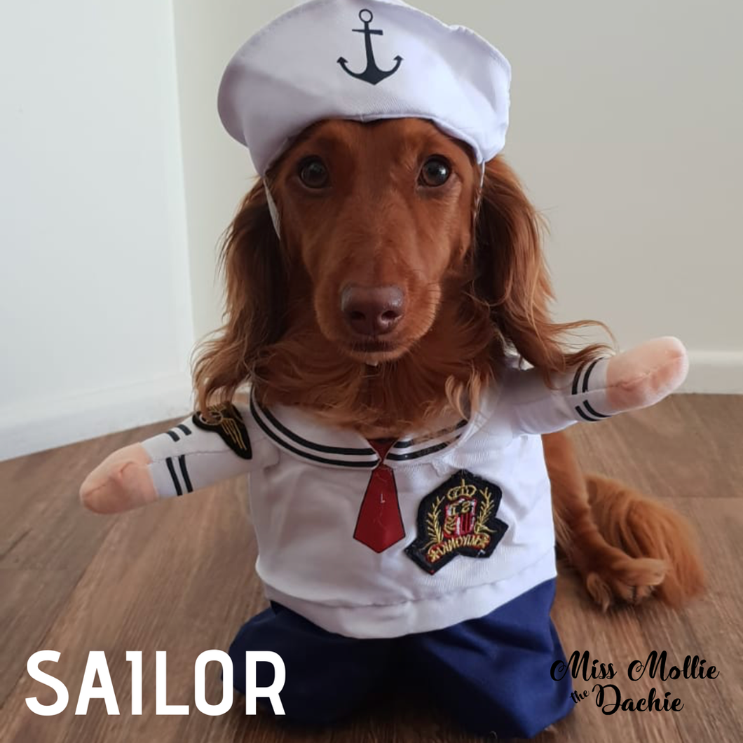 Dachlove.com Sailor Man Costume, costume- Dachshundloversonline  brings together dachshund merchandise, original and unique designed sausage dog gifts, accessories from all around the world.  The perfect addition to your dachshund loving home.  Find it in one store where you can buy them online and free shipping worldwide to your doorstep.