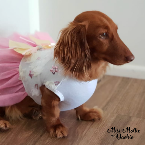 Dachlove.com Pink Floral Summer Dress, dress- Dachshundloversonline  brings together dachshund merchandise, original and unique designed sausage dog gifts, accessories from all around the world.  The perfect addition to your dachshund loving home.  Find it in one store where you can buy them online and free shipping worldwide to your doorstep.