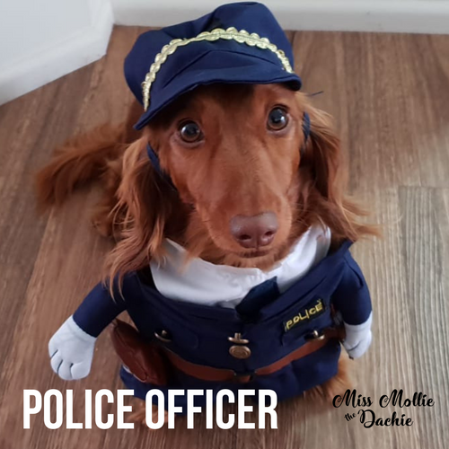 Dachlove.com Police Officer Costume, costume- Dachshundloversonline  brings together dachshund merchandise, original and unique designed sausage dog gifts, accessories from all around the world.  The perfect addition to your dachshund loving home.  Find it in one store where you can buy them online and free shipping worldwide to your doorstep.