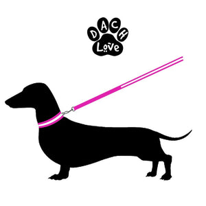 Dachlove.com Dach Love Safety LED Glow Nylon Collar Bright Pink, collar- Dachshundloversonline  brings together dachshund merchandise, original and unique designed sausage dog gifts, accessories from all around the world.  The perfect addition to your dachshund loving home.  Find it in one store where you can buy them online and free shipping worldwide to your doorstep.