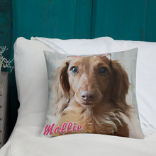 Load image into Gallery viewer, Dachlove.com Customized Premium Pillow, Custom Items- Dachshundloversonline  brings together dachshund merchandise, original and unique designed sausage dog gifts, accessories from all around the world.  The perfect addition to your dachshund loving home.  Find it in one store where you can buy them online and free shipping worldwide to your doorstep.
