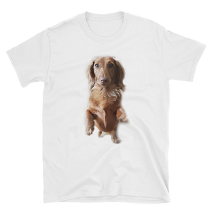Dachlove.com Customized Short Sleeve Unisex T-Shirt, Custom Items- Dachshundloversonline  brings together dachshund merchandise, original and unique designed sausage dog gifts, accessories from all around the world.  The perfect addition to your dachshund loving home.  Find it in one store where you can buy them online and free shipping worldwide to your doorstep.