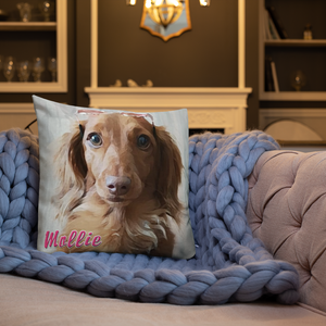 Dachlove.com Customized Premium Pillow, Custom Items- Dachshundloversonline  brings together dachshund merchandise, original and unique designed sausage dog gifts, accessories from all around the world.  The perfect addition to your dachshund loving home.  Find it in one store where you can buy them online and free shipping worldwide to your doorstep.