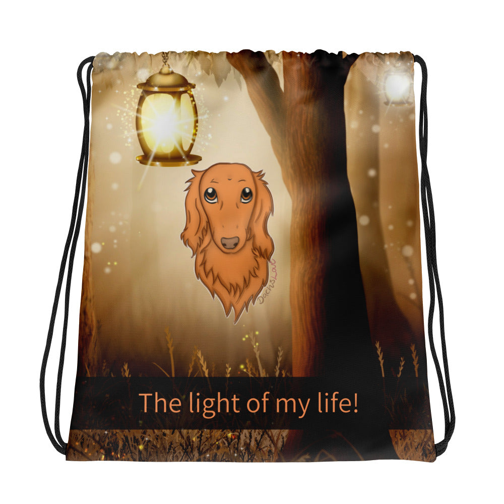 Dachlove.com Drawstring Bag Dachshund Light Of My Life, Drawstring Bag- Dachshundloversonline  brings together dachshund merchandise, original and unique designed sausage dog gifts, accessories from all around the world.  The perfect addition to your dachshund loving home.  Find it in one store where you can buy them online and free shipping worldwide to your doorstep.