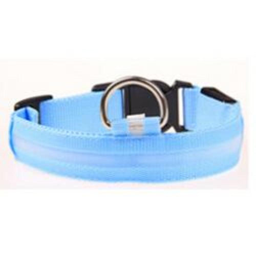 Dachlove.com Dach Love Safety LED Glow Nylon Collar Bright Blue, collar- Dachshundloversonline  brings together dachshund merchandise, original and unique designed sausage dog gifts, accessories from all around the world.  The perfect addition to your dachshund loving home.  Find it in one store where you can buy them online and free shipping worldwide to your doorstep.