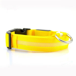 Dachlove.com Dach Love Safety LED Glow Nylon Collar Bright Yellow, collar- Dachshundloversonline  brings together dachshund merchandise, original and unique designed sausage dog gifts, accessories from all around the world.  The perfect addition to your dachshund loving home.  Find it in one store where you can buy them online and free shipping worldwide to your doorstep.