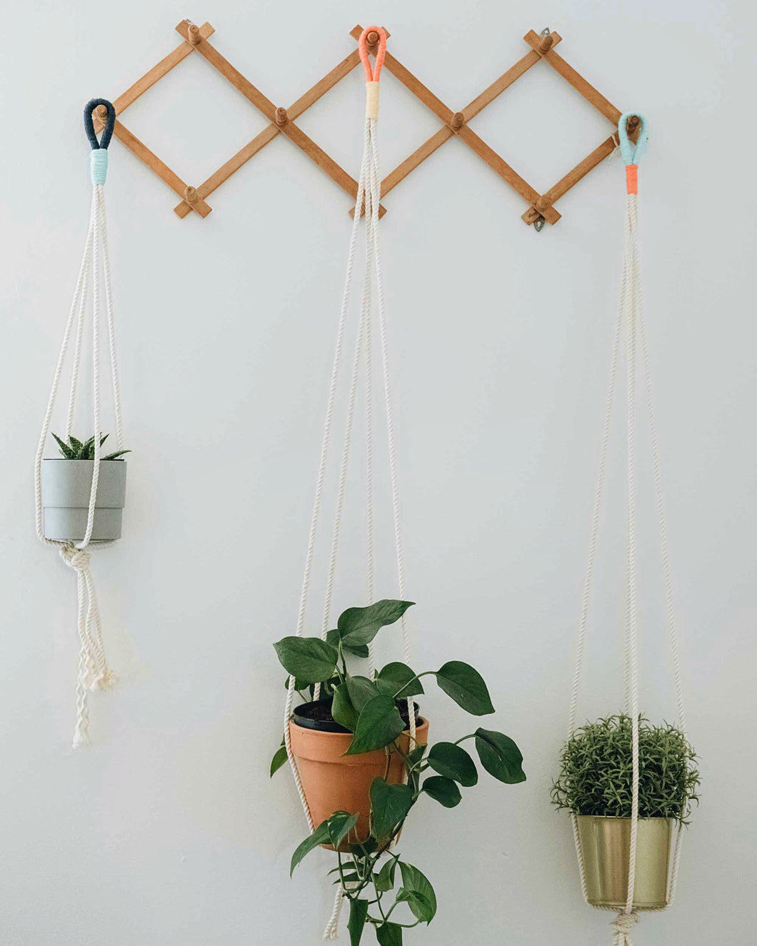 Color Block Plant Hangers