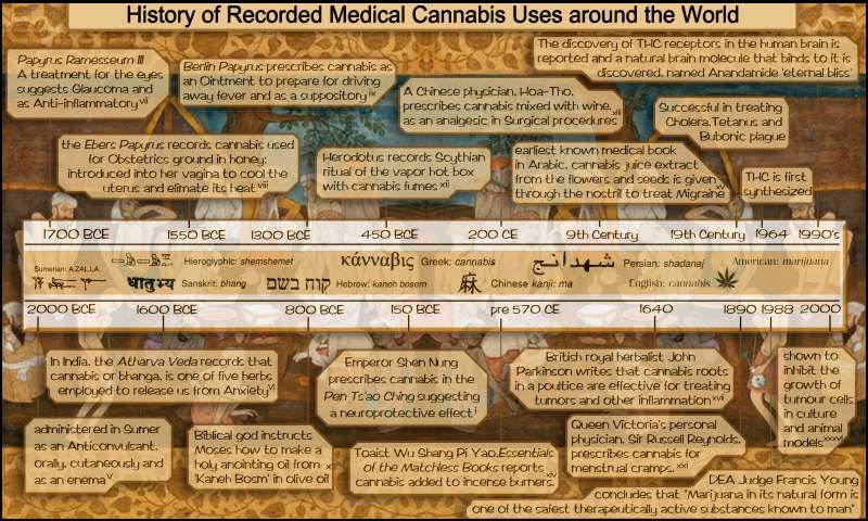 History of Medical Cannabis Uses: Infographic