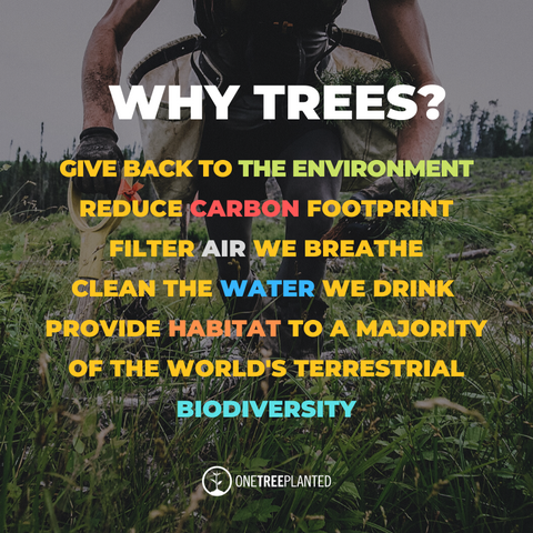 """onetreeplanted.org, """"Why Trees?"""", Clean air, shade, reduce carbon footprint"""