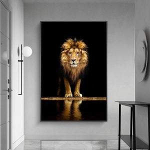 Lion in the Dark Wall Art Print (70x100cm) - Fansee Australia