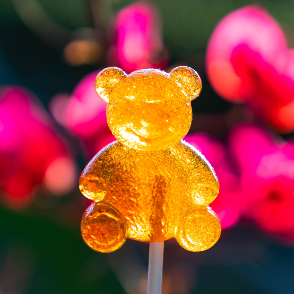 Honey Bear Lollipops (12 Pieces) - Sparko Sweets