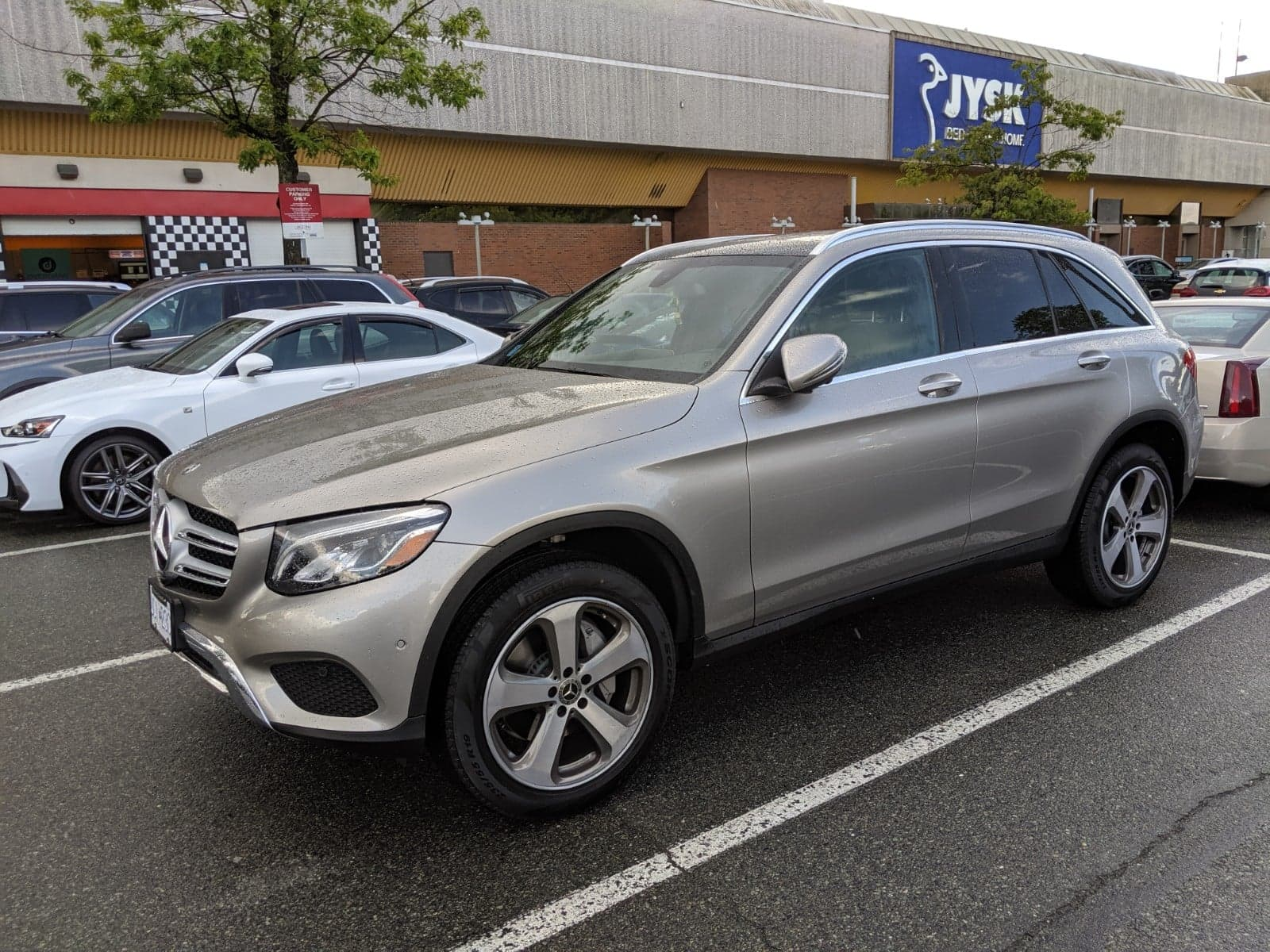 glc300 Graphite alloygator